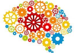 Free Healthy Brain workshop